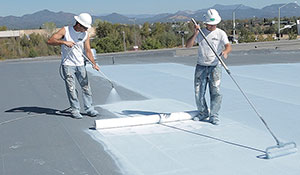 Fabric Reinforced Roofing System
